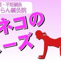 不妊体質改善ヨガ_ネコのポーズ
